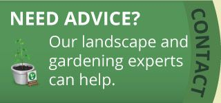 Need Advice? | Our landscape and gardening experts can help.